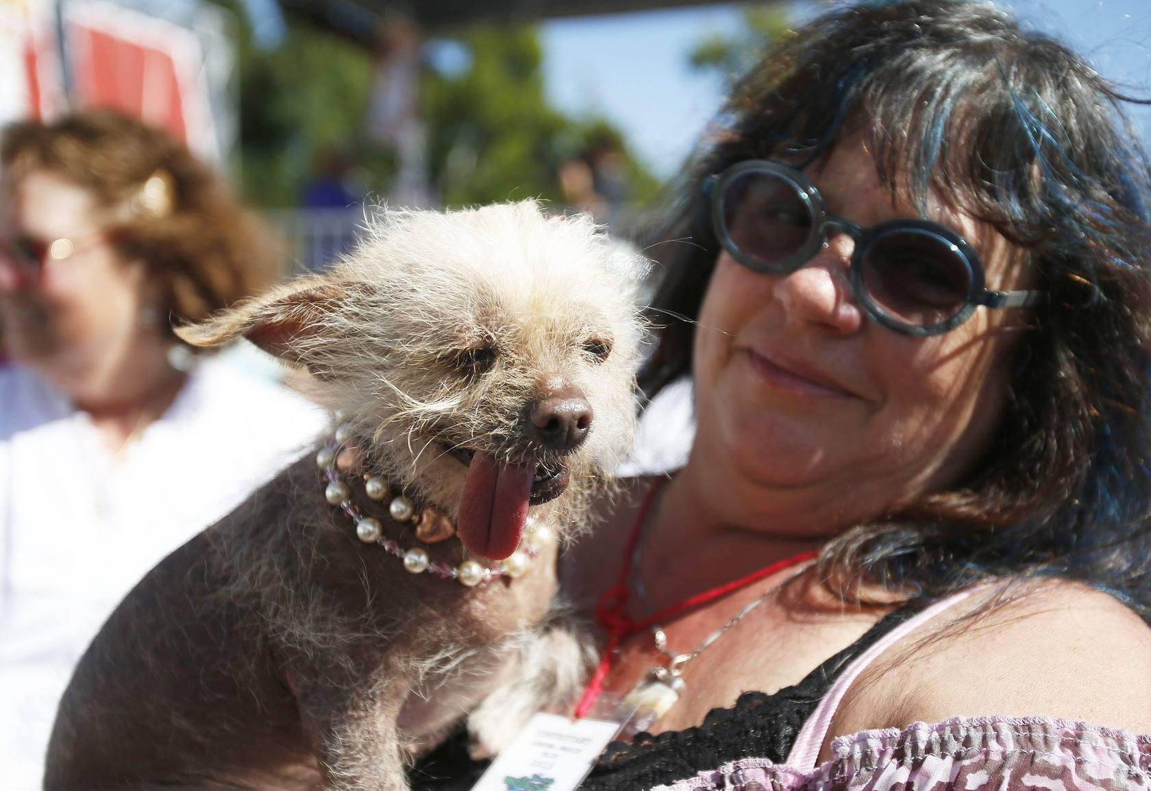 Concurso para elegir al perro más feo del mundo en Petaluma, Sonora, Estados Unidos
