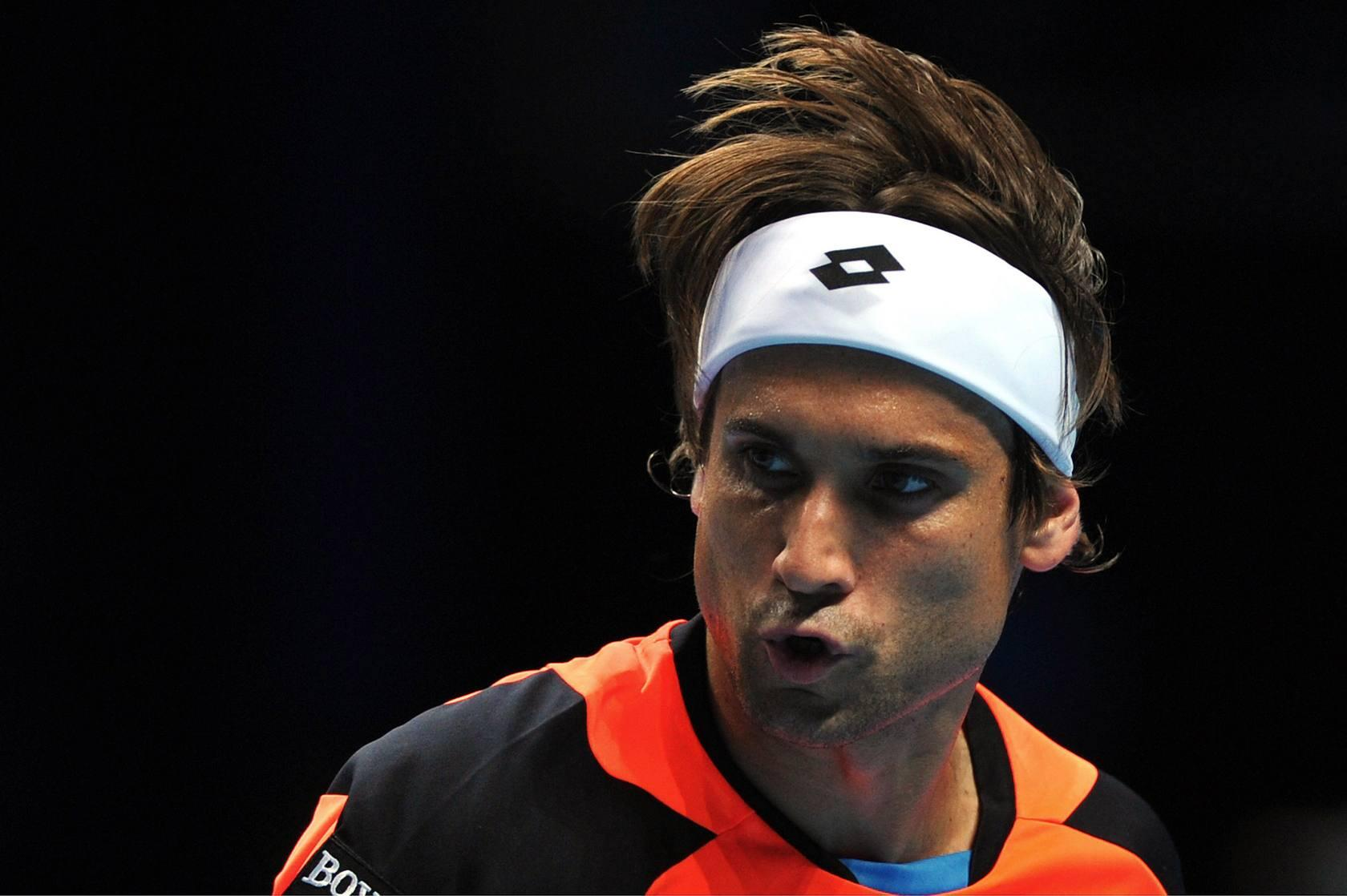 David Ferrer-Juan Mart&iacute;n del Potro
