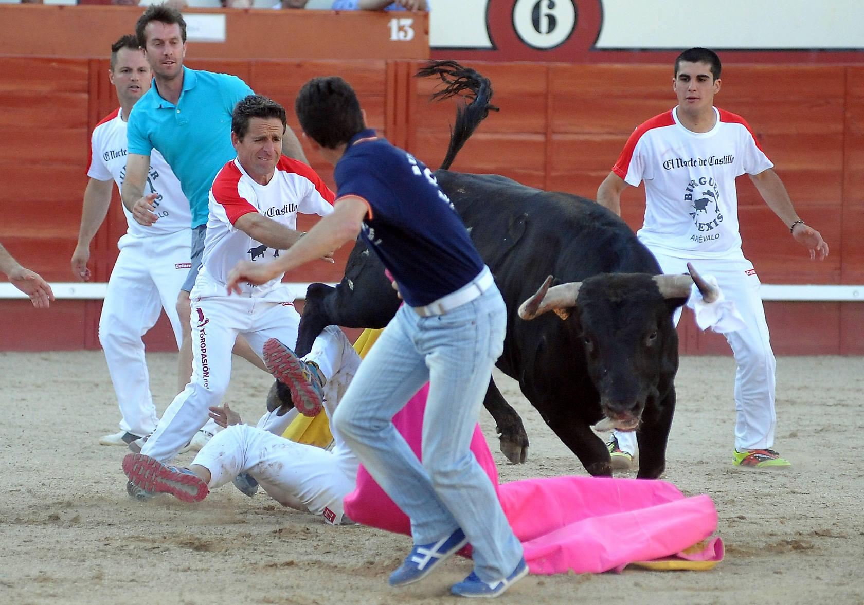 Concurso de Cortes en Arévalo (Ávila)