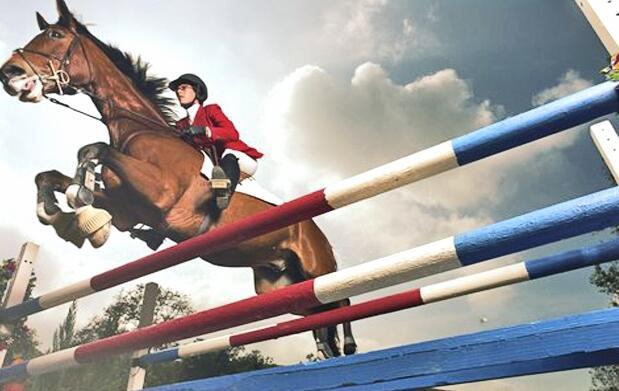 Clases de equitación para niños 11€