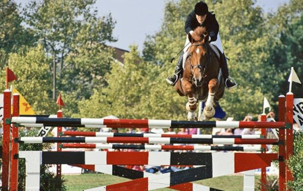Clases de equitación desde 14.95€