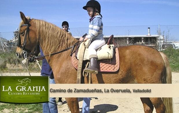 1 hora de paseo a caballo y ponys 10€