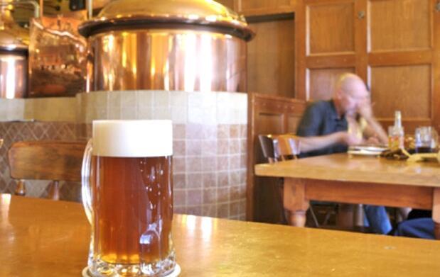 Curso práctico elaboración de cerveza 35€