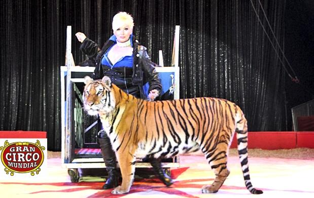 Gran Circo Mundial para 2 personas 12€