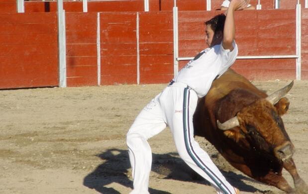 Gran corrida de toros mixta 19€