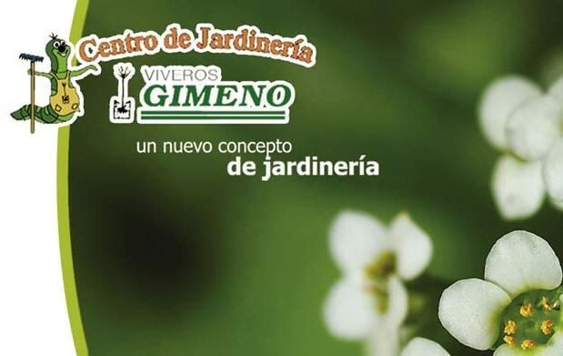 Bonsái Carmona y libro de plantas 11,95€