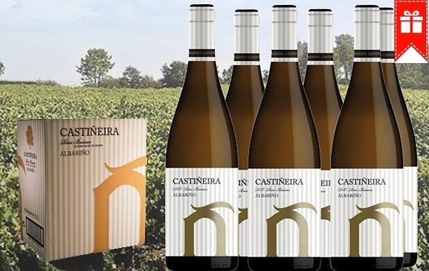 Caja 6 botellas vino blanco Albariño 29€
