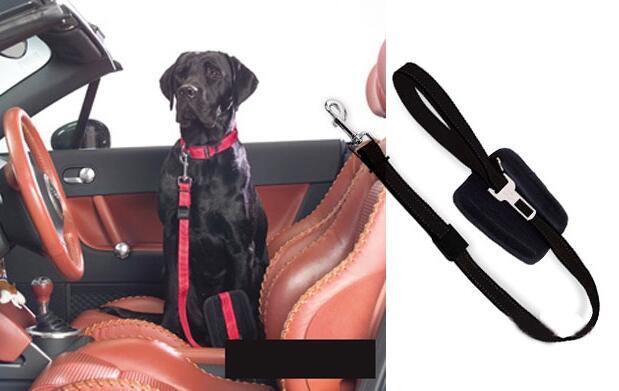Correa para perro con cinturón de seguridad en los viajes