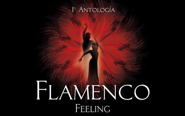 Ballet Flamenco 'Feeling' 16,80€