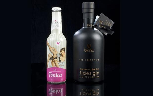 Exclusivo Pack Gin Tonic Premium 42 €