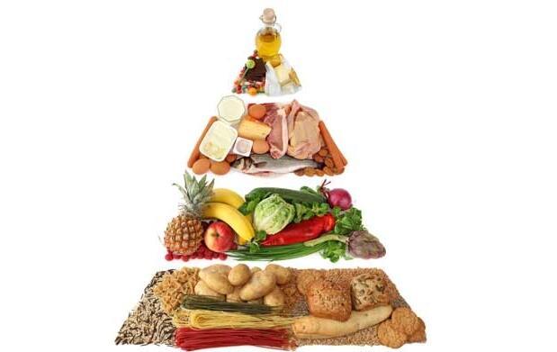 Curso online dietética y nutrición 19€