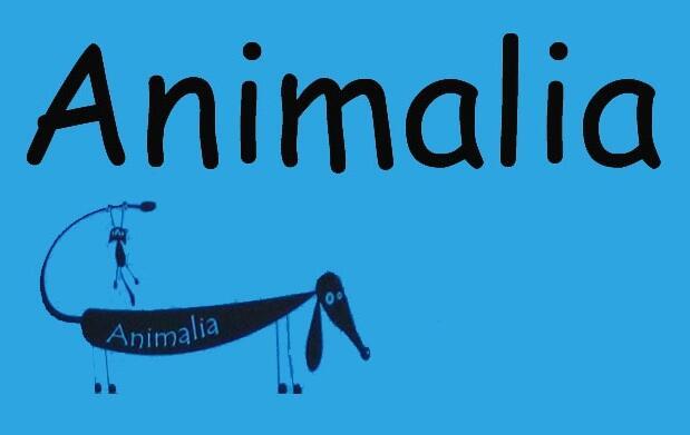 Mascotas: chequeo y vacuna de la rabia 15€