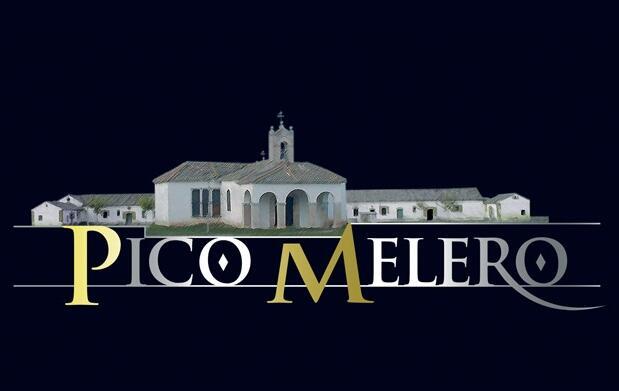 2 Cuñas de queso Pico Melero 7,40€
