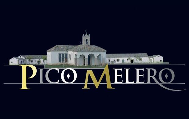 Queso Pico Melero de 1 Kg. por 12,90€