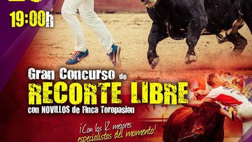 Gran concurso de Recorte Libre en Matapozuelos