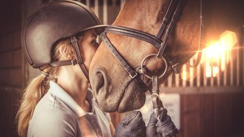 Maravilloso paseo a caballo de una hora