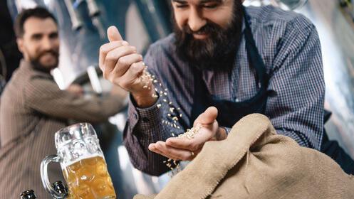 Descubre una gran cerveza artesana: cata y visita para dos