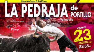 Concurso de Recorte Libre en La Pedraja de Portillo