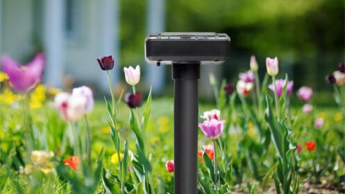 Repelente para jardín