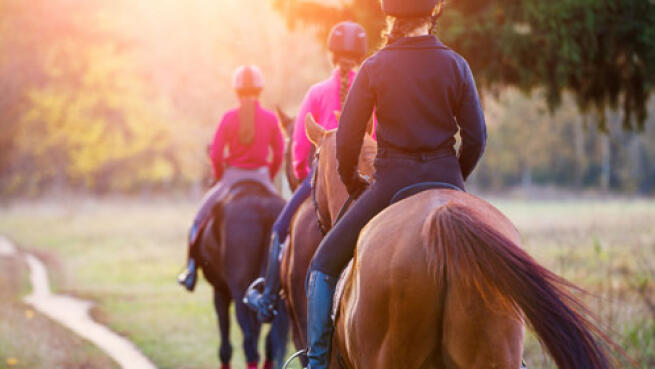 Clases de equitación o paseo en poni ¡oferta!